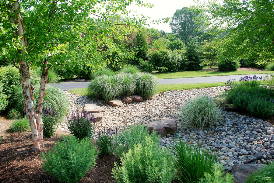 Rain gardens stormwater management and drainage solutions for Garden design solutions