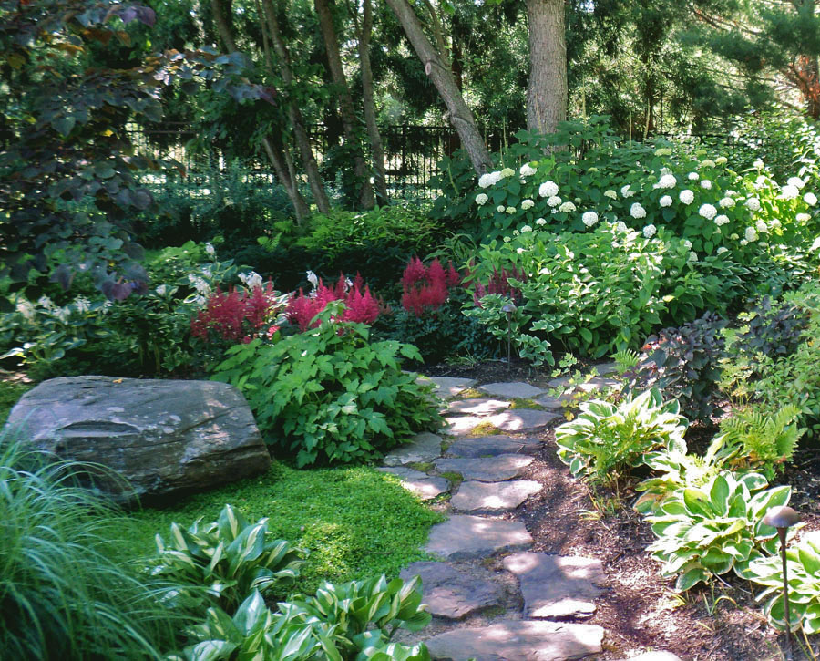 Landscape design portfolio sisson landscapes for Garden design plants