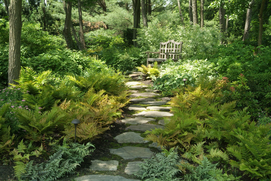 Pathways steppers sisson landscapes for Natural landscape design
