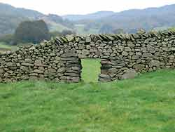 dry stone sheep creep Connect to history with Dry Stone Walls
