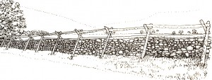 stakes and riders fence 300x113 Connect to history with Dry Stone Walls