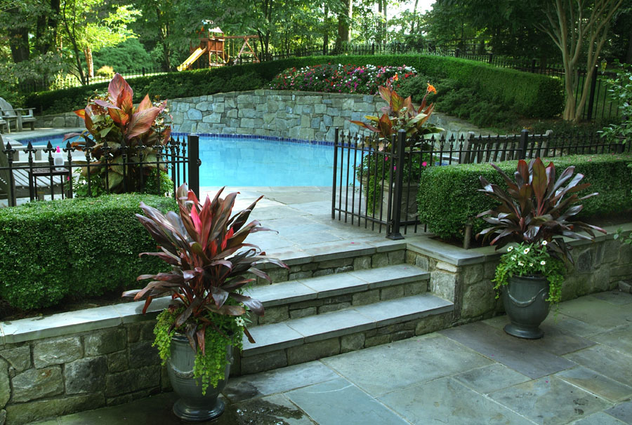 Pool needs plants for Flowers around swimming pool