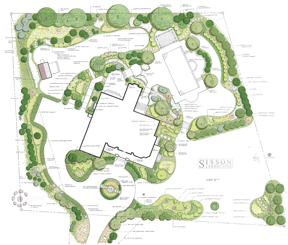 Master Plan Drawings: Master Plans @ Sisson Landscapes
